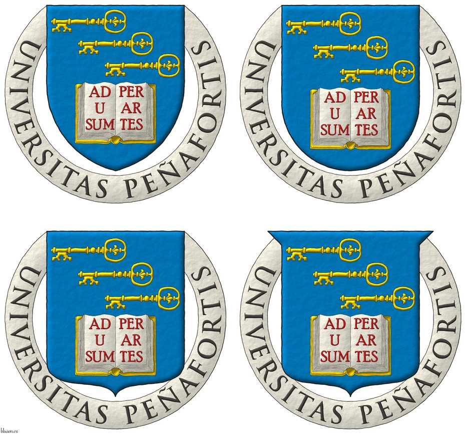 Azure, in chief three keys in bend, fesswise, to dexter, facing downwards Or, in base an open book Argent, garnished Or, the pages inscribed «Ad usum per artes» Gules. Motto: «Universitas Peñafortis».